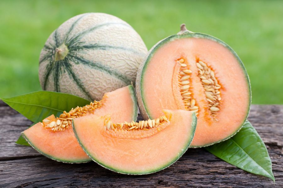 melon nevera