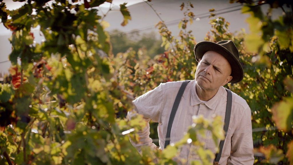 Película From the Vine